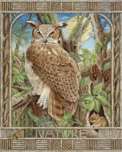 Owl in nature